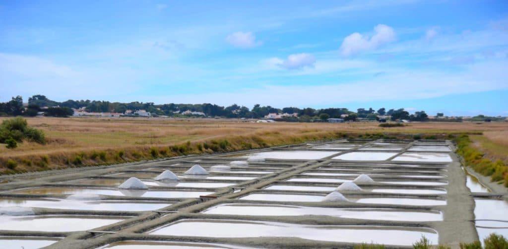 que faire à Noirmoutier passage du gois marais salant