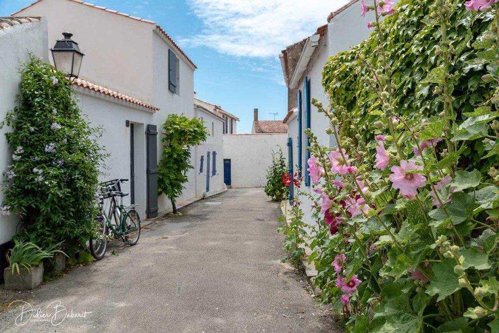 que faire à Noirmoutier passage du gois quartier de banzeau