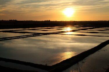 coucher de soleil marée salant